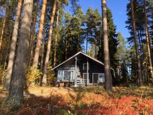 Linnusmaa cabin